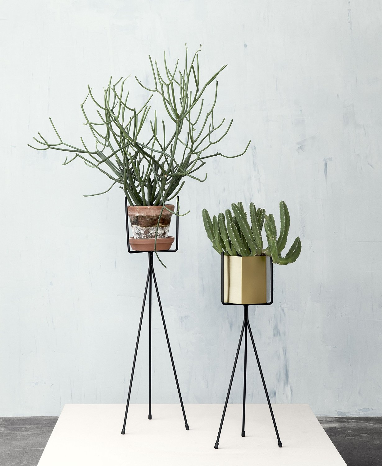 Support plante archives le blog d co de mlc for Pot de plante design