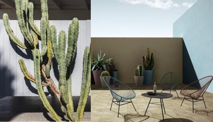 le cactus am nage une terrasse d co. Black Bedroom Furniture Sets. Home Design Ideas