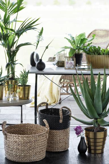panier-plante-urban-jungle