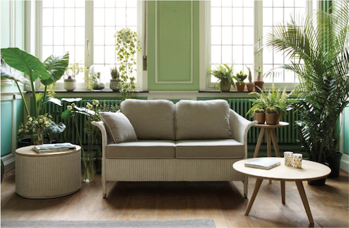 urban jungle plante verte et mur vert couleur pastel blog mlc. Black Bedroom Furniture Sets. Home Design Ideas