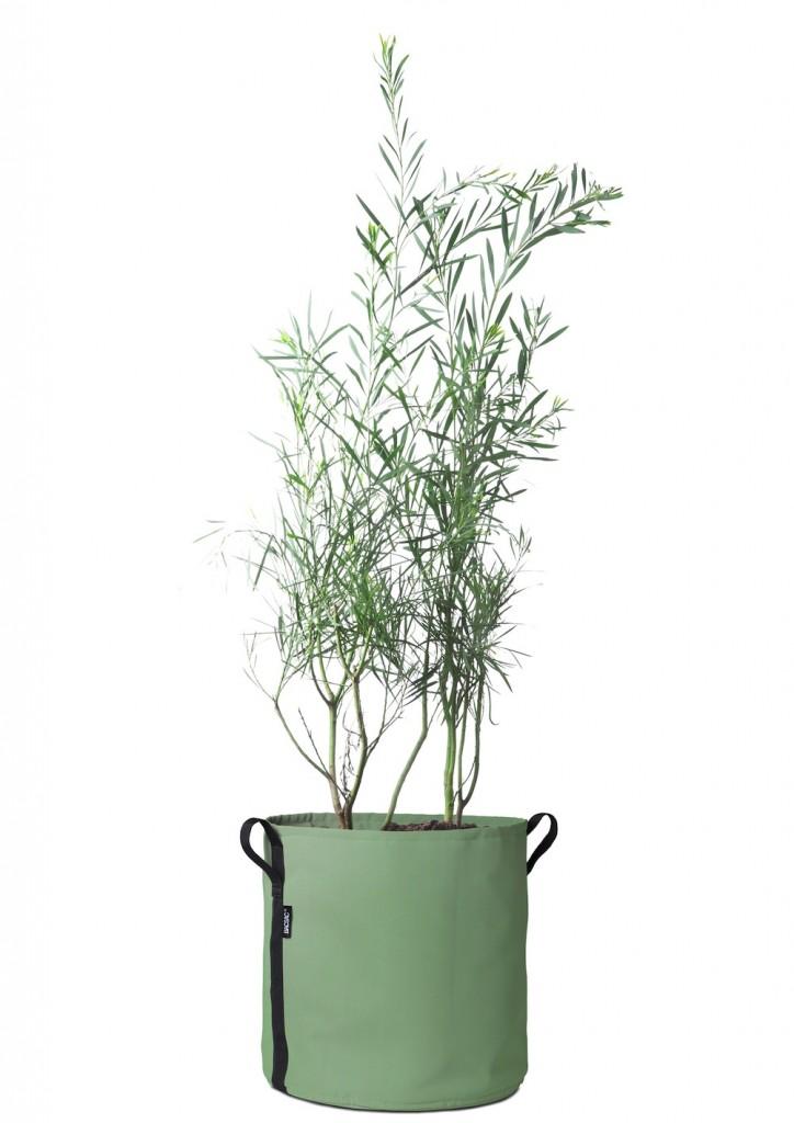 cache-pot-plante-verte-bacsac-mint