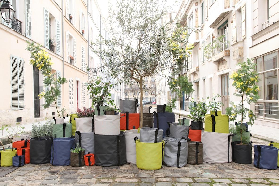 Jardin terrasse et balcon le blog d co de mlc for Vente plante verte