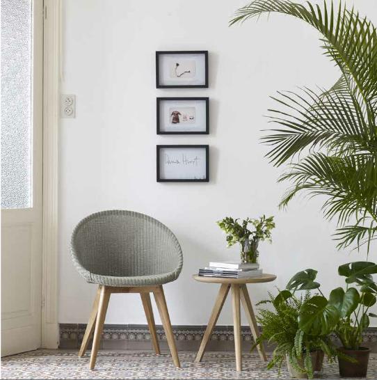 plante-verte-fauteuil-bois-naturel- vincent-sheppard