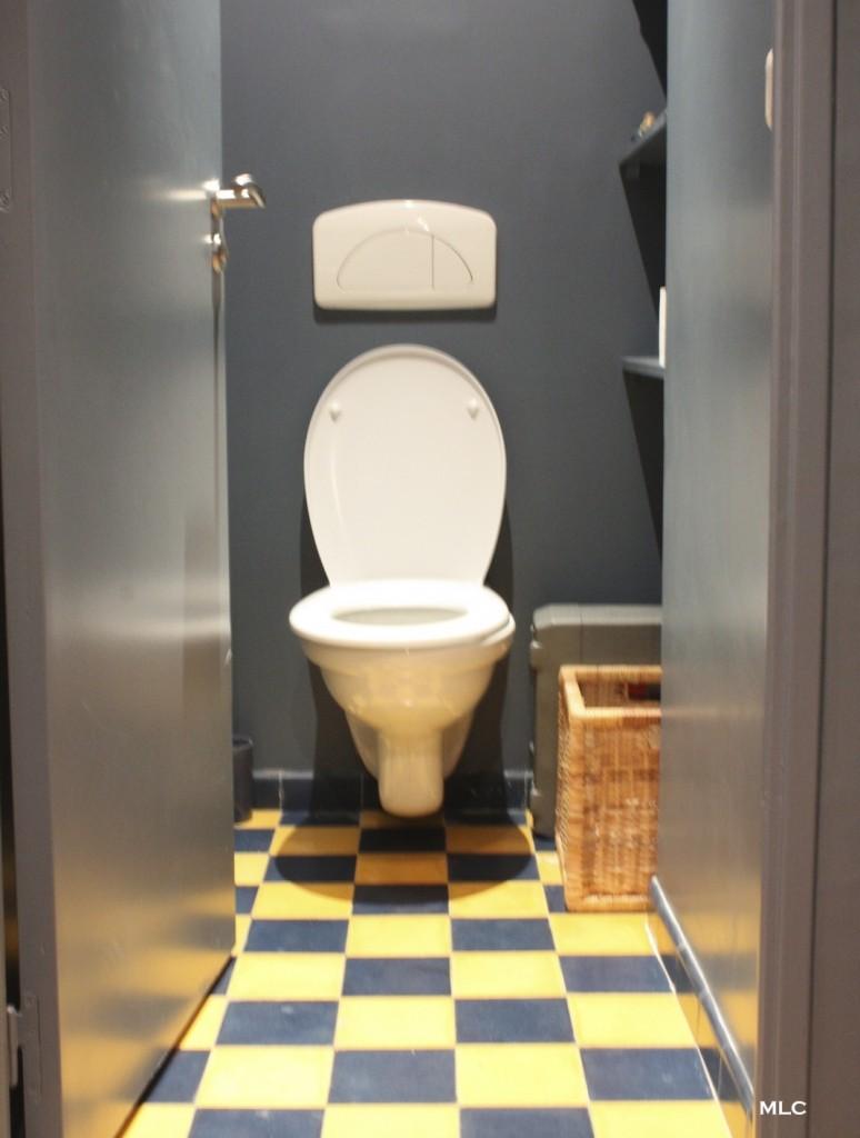 carrelage-tile-toilette-fun
