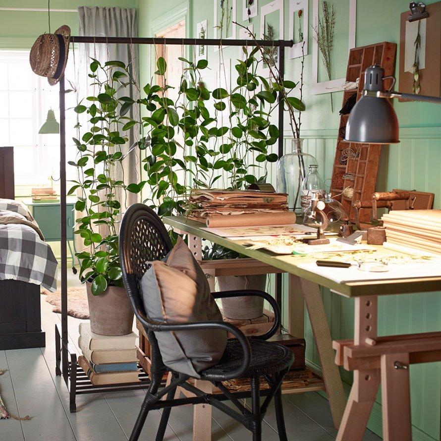 plante-verte-et-mur-vert-clair-urban-jungle-bureau-ikea